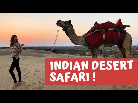 Download INDIAN DESERT SAFARI!🐪🌵JAISALMER, INDIA TRAVEL VLOG HD Mp4 3GP Video and MP3