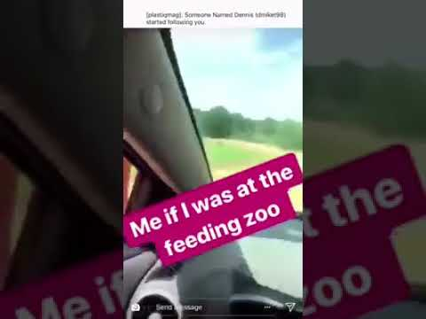 When Feeding The Animals At Zoo Too Funny
