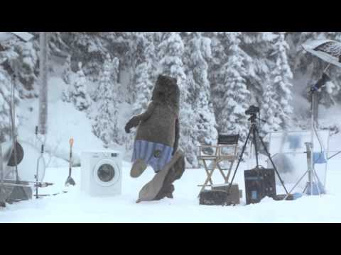 Polar Bears 2 7 Youtube Film