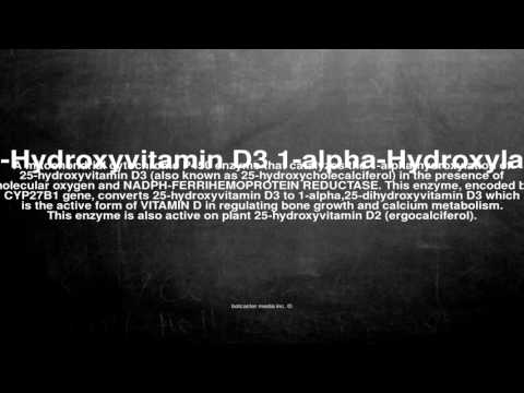 Medical vocabulary: What does 25-Hydroxyvitamin D3 1-alpha-Hydroxylase mean