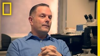 Lying Expert: Daniel Rabicoff