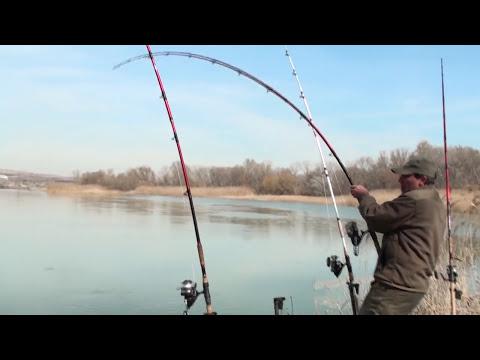 ловля сома на реке с берега видео