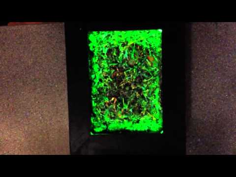 LED-lit Spider Web Painting