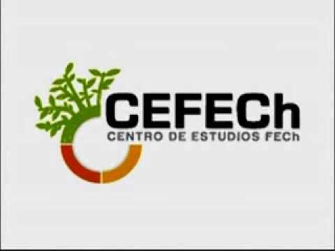 """""""Radiografía del modelo universitario chileno: la ineficiencia tras un gran negocio"""""""