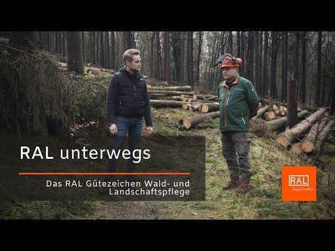 Wie geht es dem Wald und was steckt hinter dem RAL Gütezeichen Wald- und Landschaftspflege?