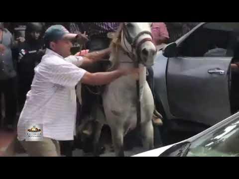 Productores de diversos rubros se enfrentaron con la Policía en Divisa