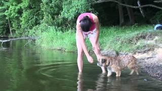 Pohyb ve vodě