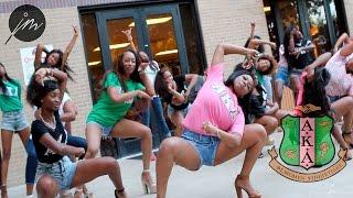 The 2014 Texas State Yard Show: Alpha Kappa Alpha Sorority Inc.