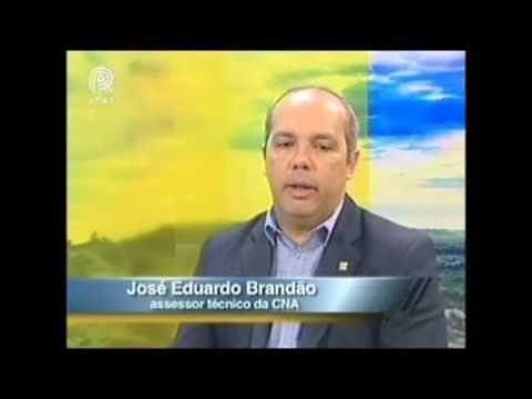 Assessor técnico da CNA fala sobre consumo de frutas no Brasil