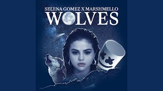 Video Wolves MP3, 3GP, MP4, WEBM, AVI, FLV Januari 2018