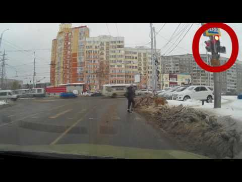 Dog Waits For Green Light To Cross The Street Woman
