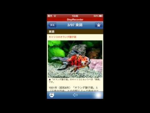 Video of 金魚図鑑ベスト100