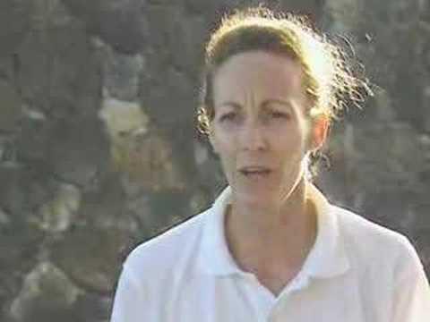 Galapagos: Geschäftsführer Tourismus in (7.7)