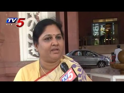 YCP MP Kothapalli Geetha Met Chandrababu in Delhi : TV5 News