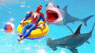 GTA 5 Spiderman Water Ragdolls #31 (Euphoria Physics | Funny Moments)