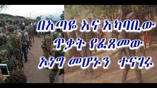 The latest Amharic News April  09, 2019