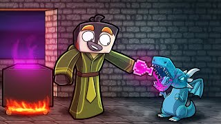 this SECRET Potion cures my DRAGON? (Minecraft Dragons)