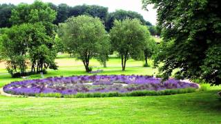 Bad Rappenau Germany  City new picture : Ayurveda Garden Bad Rappenau .Ayurveda Behandlung