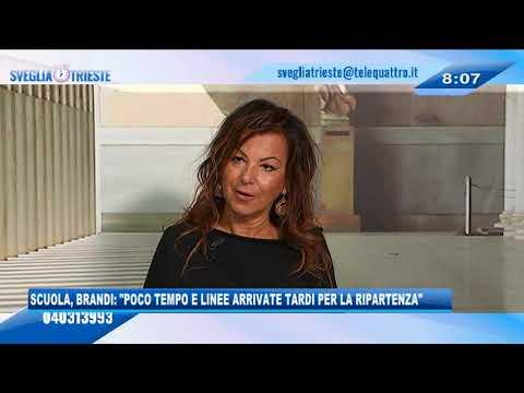 """17/09/2020 - SCUOLA, BRANDI: """"PER LA RIPARTENZA POCO TEMPO E LINEE INCERTE"""""""