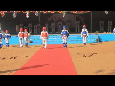 Hawrang Martial Art Demonstration on Repulicday-2015