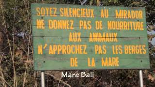 Self Drive Safari To Pendjari NP Benin