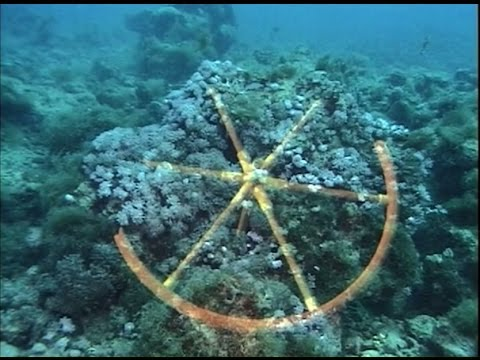 Amazing evidence for the Red Sea Crossing v2