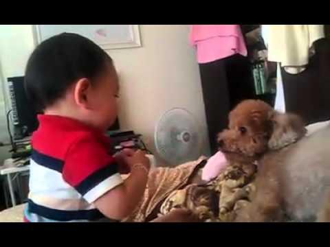 小孩跟小狗吵架