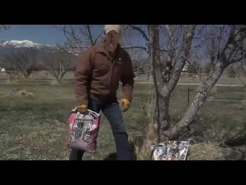 2013 ameristepgame Innovations Apple Crush and Lights Out Trail Cam Tip Segment