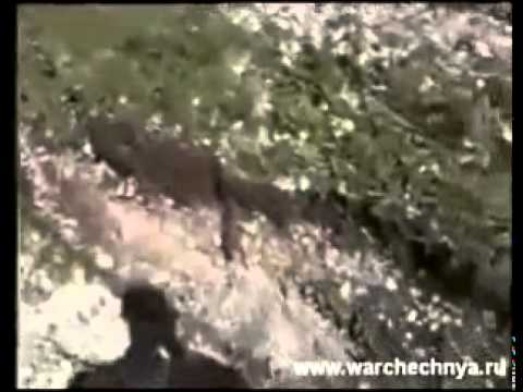Видео снятое в Чечне ВДВ 2003 год