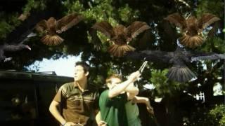 Watch Birdemic: Shock and Terror (2010) Online Free Putlocker
