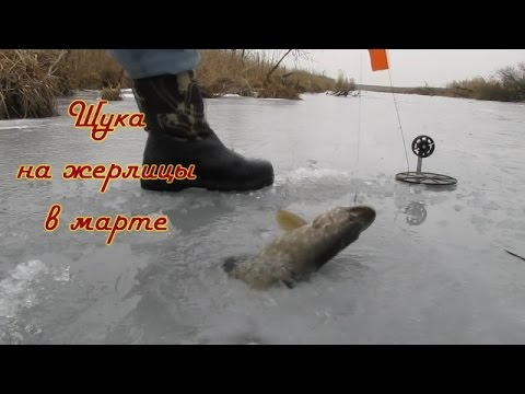 видео рыбалка на жерлицы 2015 видео
