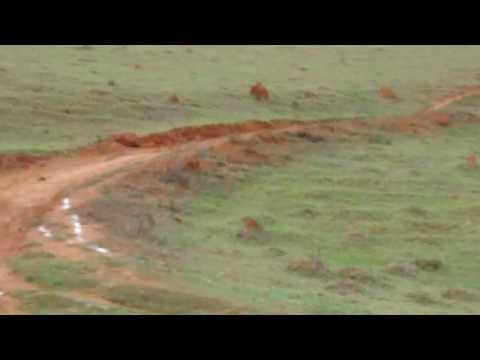 Trilheiro de rochedo de minas(4)