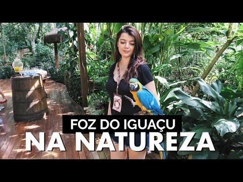 PRIMEIRA VIAGEM DO BEBÊ  Vlog #58  Lia Camargo em Foz do Iguaçu