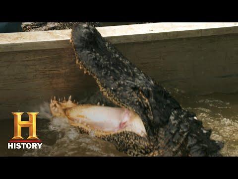 Swamp People: Troy's TERRIFYING Trip to the Boneyard (Season 8) | History