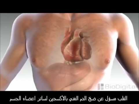 كيف تحدث الذبحة الصدرية ؟