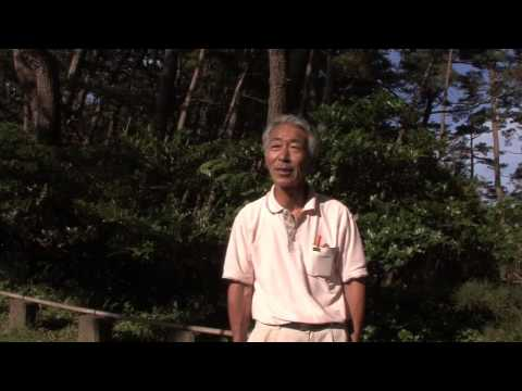 Kesennuma Oshima Island: Part 3