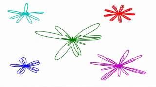極座標の花