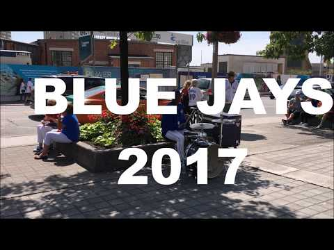 Toronto Blue Jays game experience video