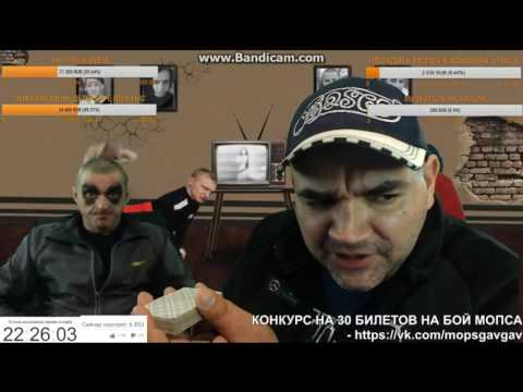 Мопс Общается с VJLinkHero