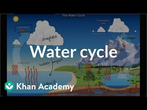 The Water Cycle Video Ecology Khan Academy