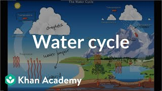 The water cycle  | Ecology | Khan Academy