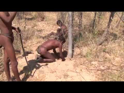 Đời sống thường ngày của thổ dân - Namibia Buschman Walk