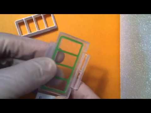ABC SCIENTIFIC Cell Culture Chamber slides