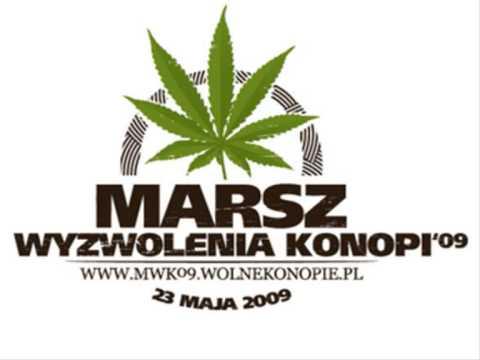 Tekst piosenki Grubson - Diss na rząd po polsku