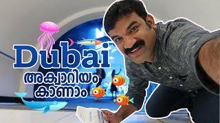 Video 🦈 🐟ദുബായ് അക്വാറിയം കാണാം 🐬| Dubai Aquarium and Underwater Zoo MP3, 3GP, MP4, WEBM, AVI, FLV Januari 2019
