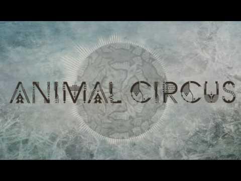 Animal Circus - Shadrack