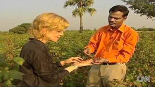Biochar - CNN Video