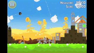 Angry Birds Seasons Summer Pignic Level 10 Walkthrough 3 Star