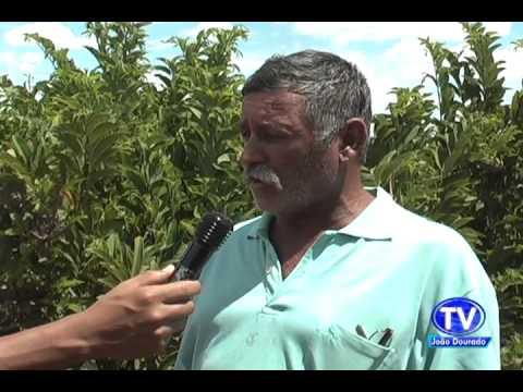 AGRICULTOR DE AMERICA DOURADO PEDE SOCORRO.