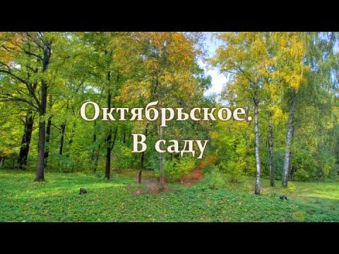 Октябрьское. В саду